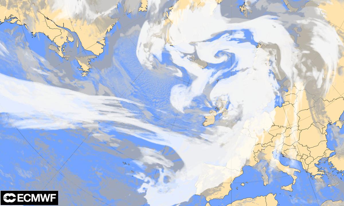 Prévision de la couverture nuageuse de ce dimanche 9 février à 12h UTC (source : ECMWF).
