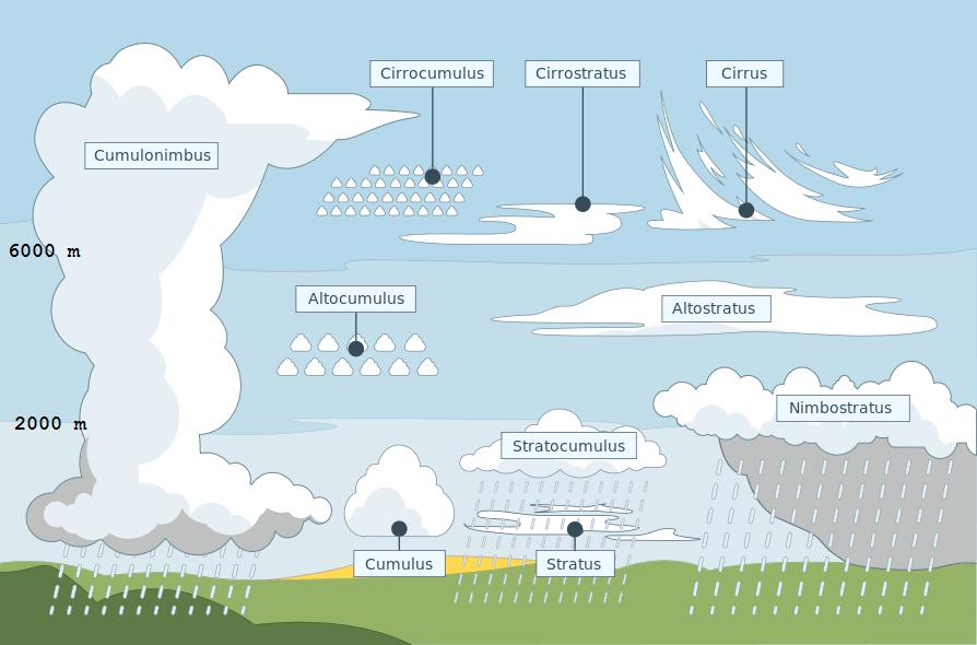 De tien wolkengeslachten. Nimbostratus is de klassieke regenwolk, cumulonimbus is de onweerswolk. So
