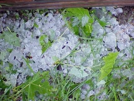 Korrelhagel is transparanter dan korrelsneeuw, maar minder doorschijnend dan ijsregen.